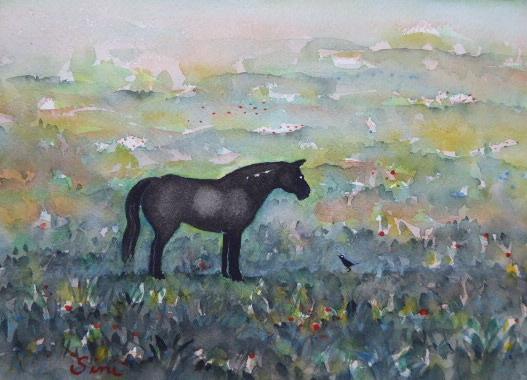 Cheval noir | Aquarelle | 24x18
